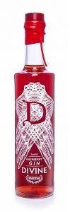 Divine Raspberry Gin