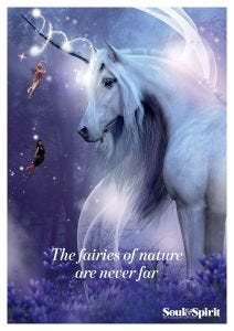 Fairies of Nature Poster