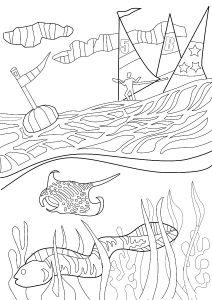 Manta Ray Colouring Page