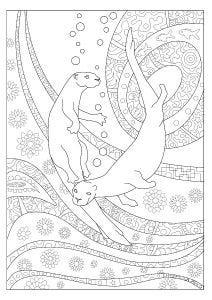Otter Colouring Page