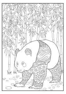 Panda Colouring Page