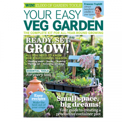 Your Easy Veg Garden 2021