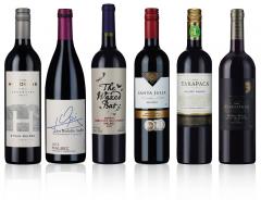 Classic Malbec Wine Selection (6 bottles)