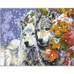 Paint By Number-Husky Dog's