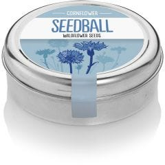 Cornflower - Wildflower Tin