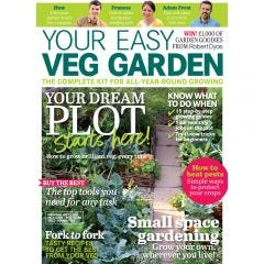 Downloadable Your Easy Veg Garden 2020